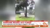 Hurricane Michael now a category 4 storm