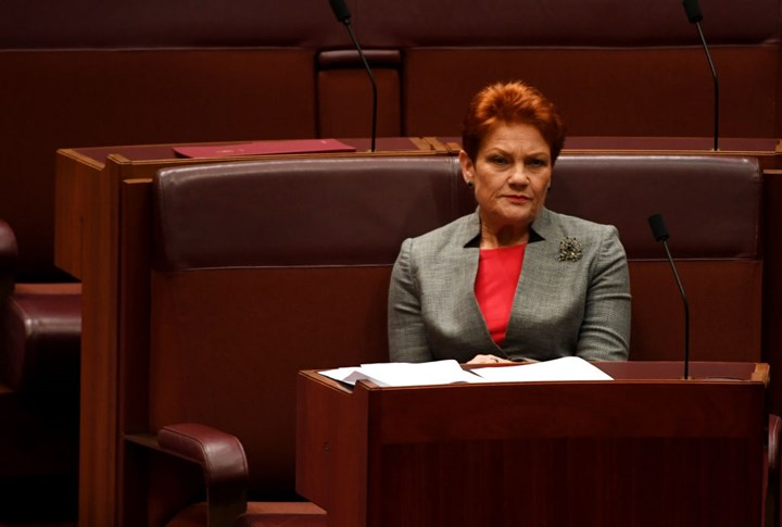 Pauline Hanson Says Women Make Up DV & Is Not Fit To Chair Family Law Inquiry