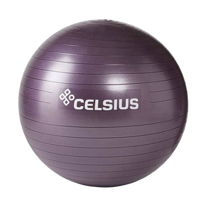 Celsius Fit Ball