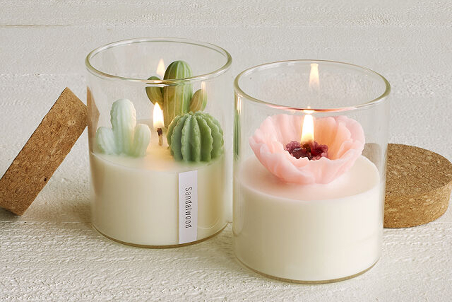 Listen Up Plant Ladies: Succulent Candles Are The Newest Trend Taking Over